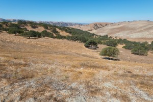 parched hills CA